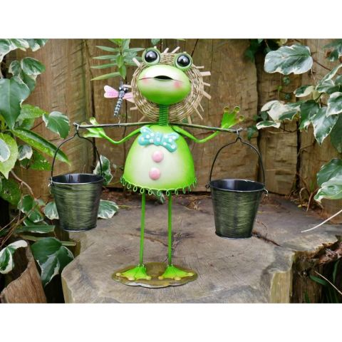 Frog With Two Pots